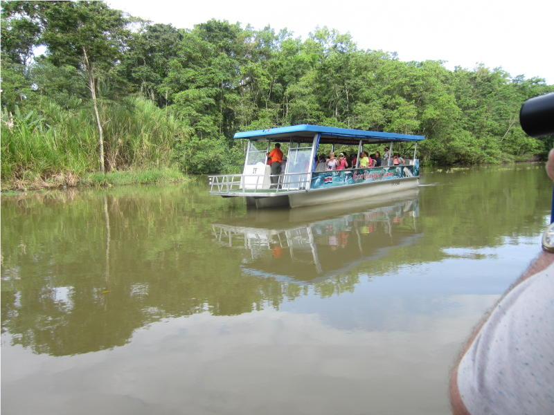 Boat tour on the Turtuguero Canal   Puerto Lemon